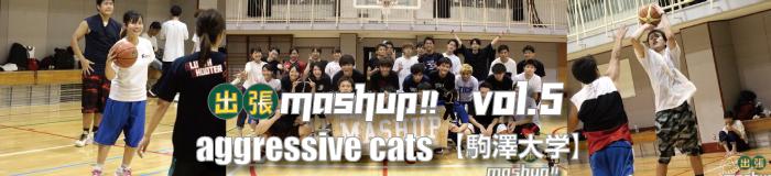 駒澤大学《AggressiveCats》